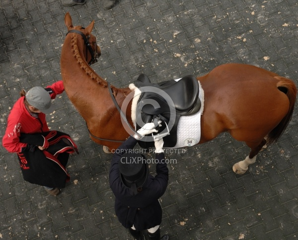 Dressage from Above