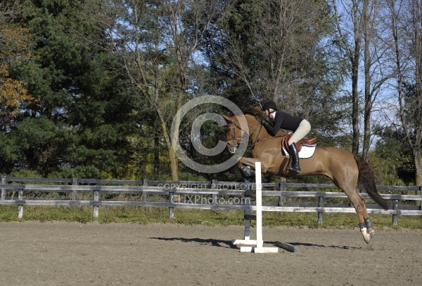 Schooling Over Fences