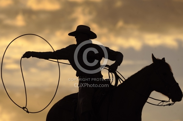 Lasso in the Sunset
