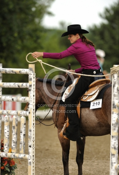 The Rope Gate in Trail Class at Quarter Horse Show, Palgrave 2012