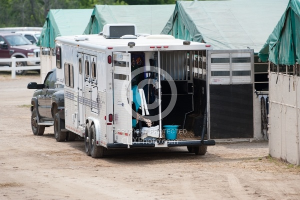 Horse Trailer at Show